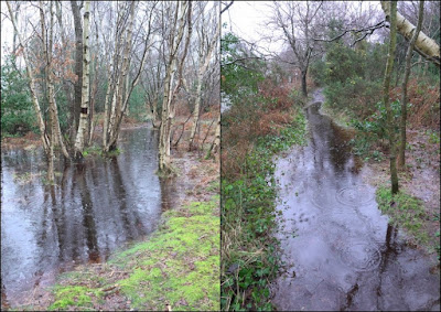 Flooding at Cleaver Heath