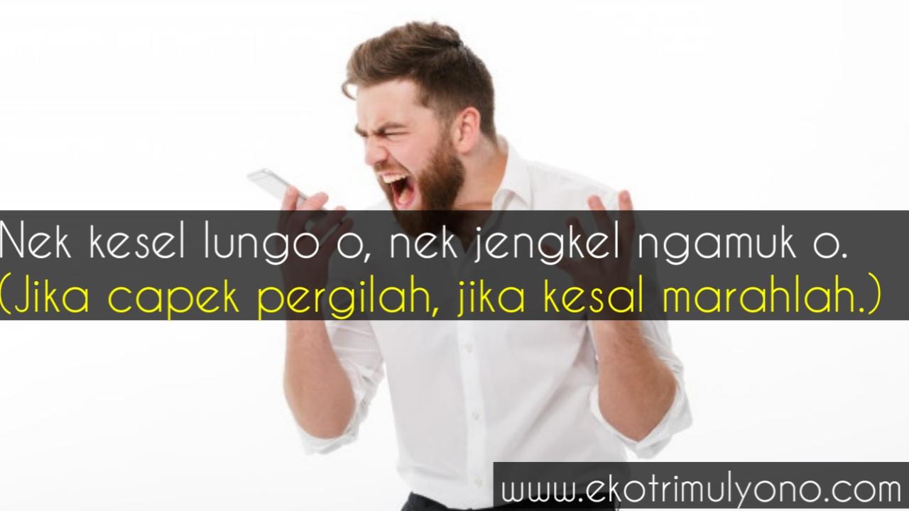 Kata kata marah bahasa jawa dan artinya