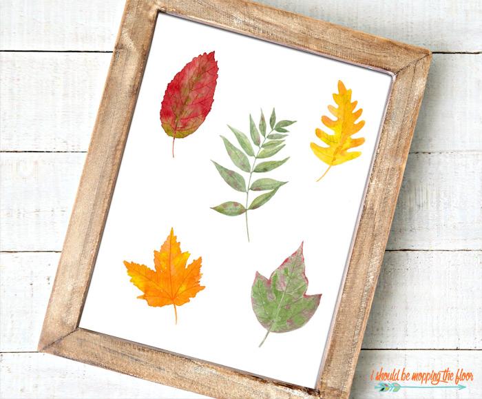 Plain Leaf Printable