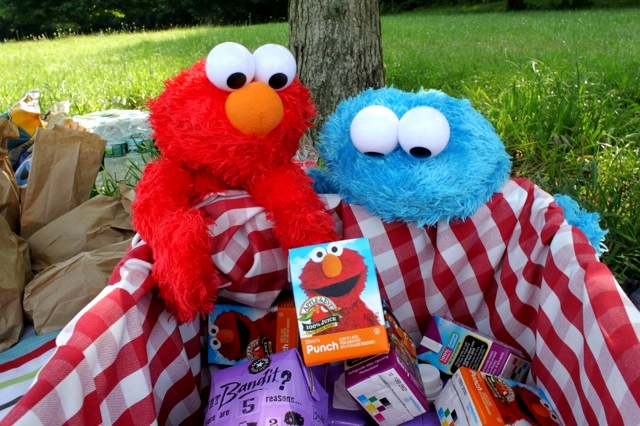 A Sesame Street Inspired Party in Central Park - via BirdsParty.com