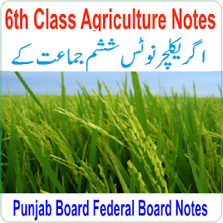 Easy Notes Publishers 6th Class Agriculture Notes In PDF Download