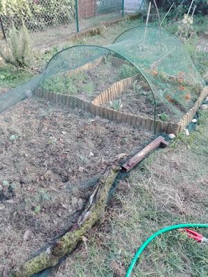 Proteggere l'orto con una rete e fermarla con pietre o tronchi
