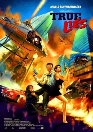 True Lies 1994 BRRip 480p 300Mb Hindi-English