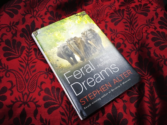 Feral Dreams: Mowgli & His Mothers by Stephen Alter