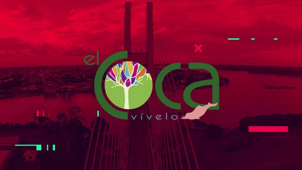 Programa completo Carnaval de Coca 2019