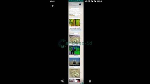 Cara Screenshot Panjang Chat WhatsApp di HP Advan