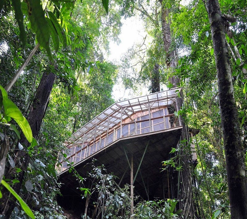 Finca Bellavista stays closed during October due to the high amounts of rain. - Your Childhood Dreams Will Be Re-Awakened When You See These Magical Treehouses.