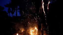 Governo registra diminuição de focos de incêndio na Amazônia