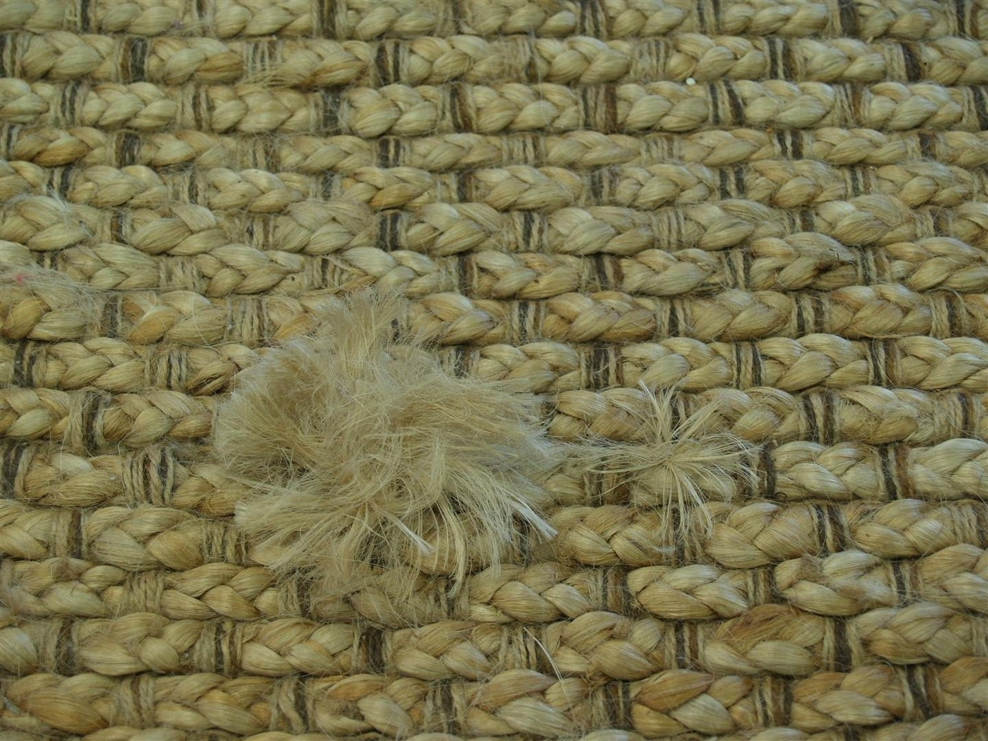 How To Pick Out An Area Rug Rug Master Sisal Rugs Vs Big Puppy