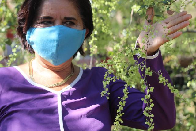 Apicultura yucateca atraviesa momentos críticos: Ortiz Vázquez. Antonio Sánchez