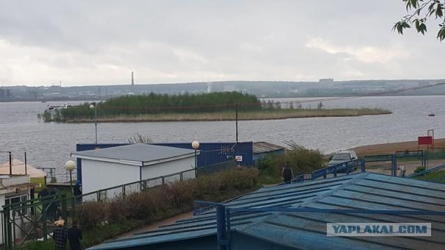В Ижевске по пруду плывет остров с деревьями!