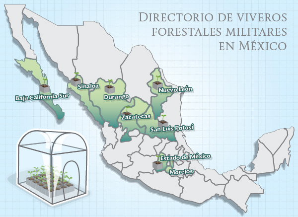 Almexik blog ej rcito mexicano viveros forestales for Viveros forestales conafor