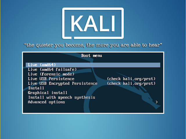 Kali Linux live bootable usb