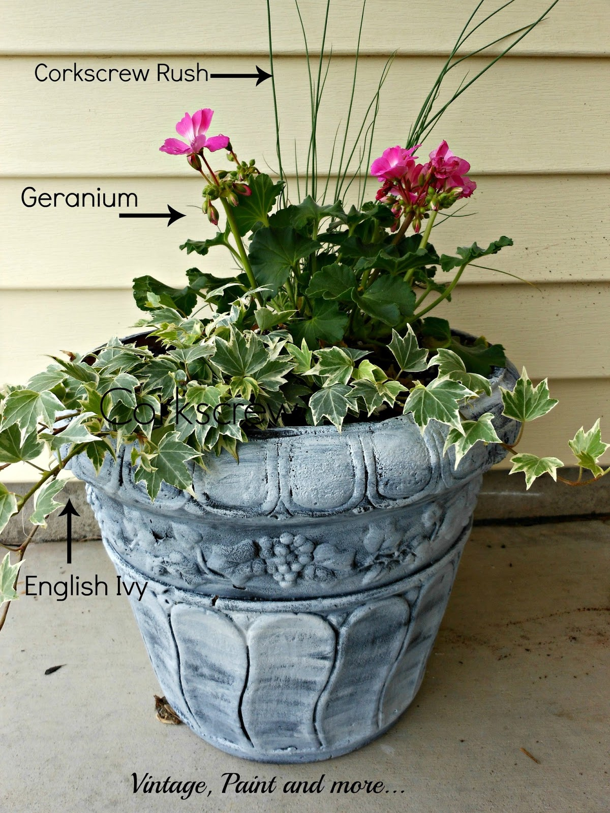 Vintage, Paint and more... container garden made with sun loving plants