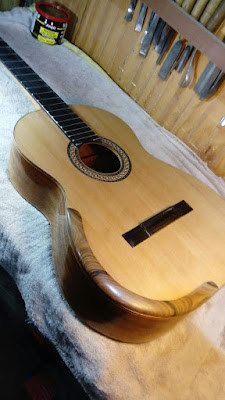 Guitarra Antilko del luthier Claudio Rojas