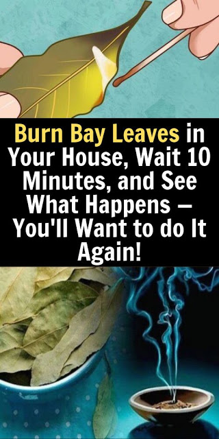 Burn Bay Leaves in Your House, Wait 10 Minutes, and See What Happens — You'll Want to do It Again!