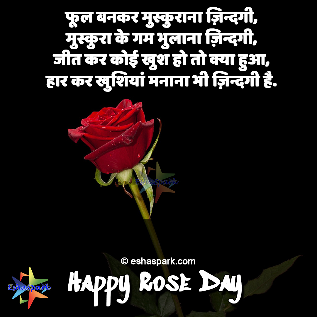 Happy Rose Day Shayari 2020 7th Feb Wishes Quotes In Hindi