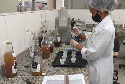 Projeto do Ifal Piranhas produz licores com uvas cultivadas em parreirais da unidade