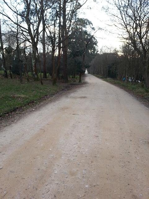 Camino de tierra en Deva