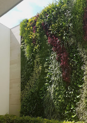 Jasa Pembuatan Taman Vertikal Garden - Tukang Rumput Bogor