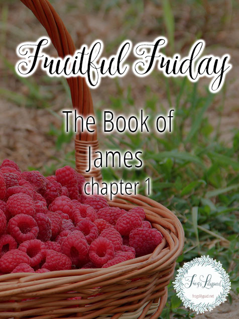 Simple Thoughts Without Theology: James 1 - Frog's Lilypad