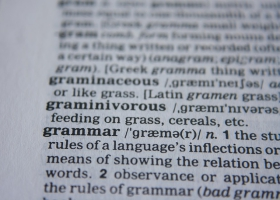Grammar definition from a dictionary.