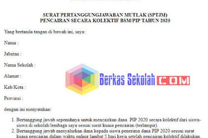 Format SPTJM PIP/ BSM 2020