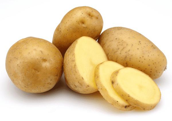 Kentang, sumber makanan penghasil karbohidrat
