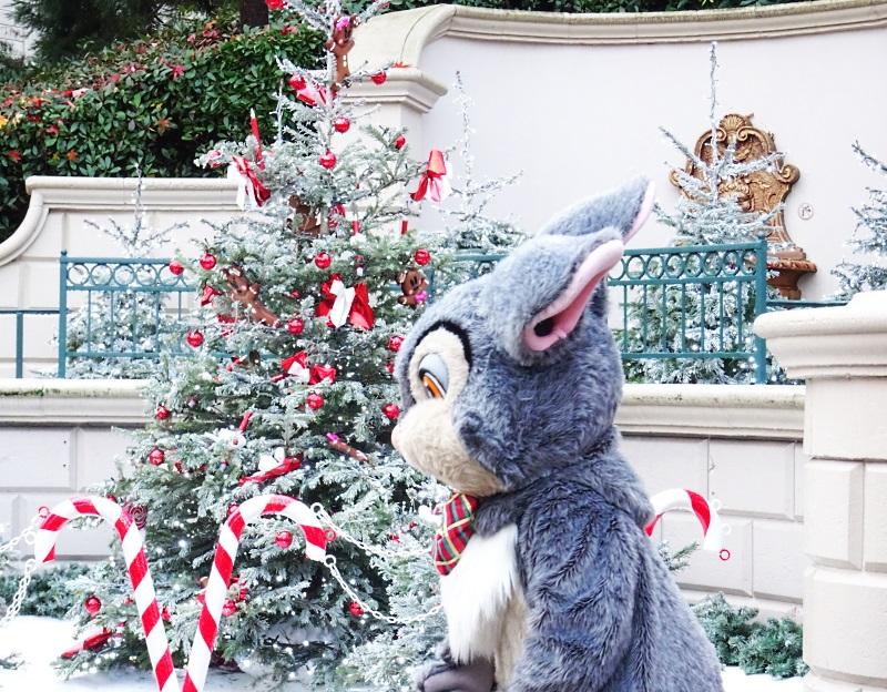 PanPan à Disneyland Paris