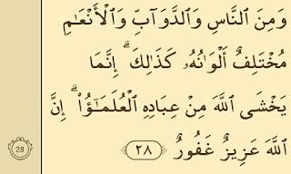 surat fatir ayat 28