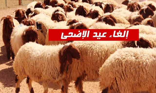 تونس إلغاء عيد الإضحى لهذا العام