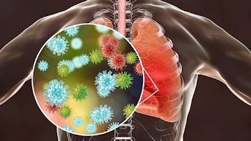 Coronavírus: os especialistas sabem, mas não dirão que isso pode salvar sua vida