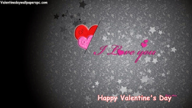 Valentines Day I Love You