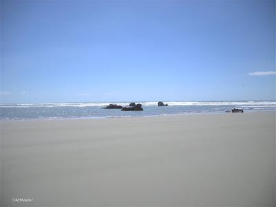 sandy beach, New Zealand