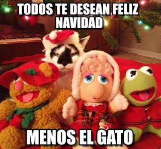Rana Gustavo felicita Navidad menos el gato