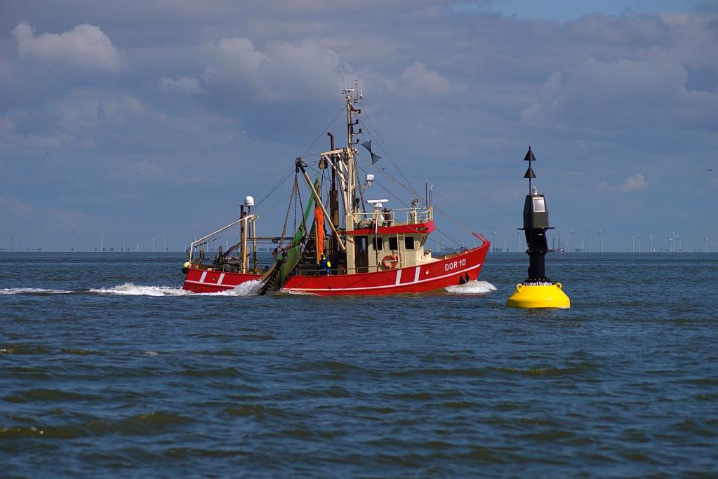 #120 Orestor f4 200mm – Gerade noch in der Nordsee