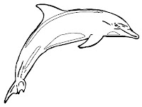 Printable dolphin coloring pages for kids