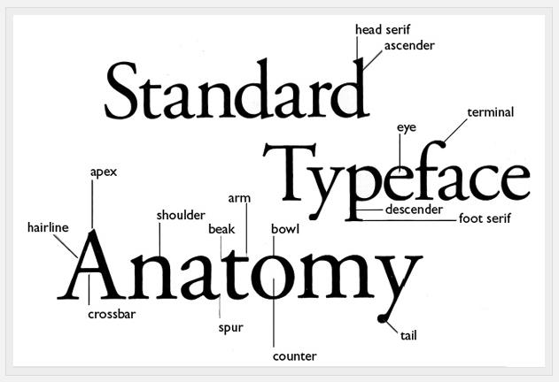 Design Practice Typography Task Helvetica Vs Optima