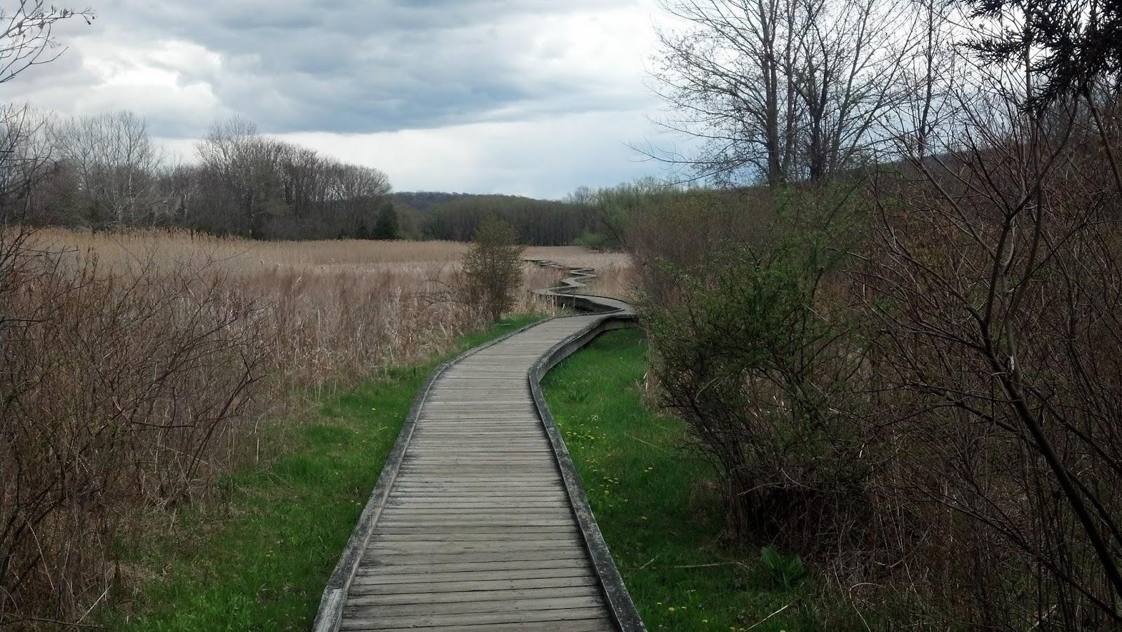 Дорожка Почак - Нью-Джерсийские болота (Pochuck boardwalk, Vernon, NJ)