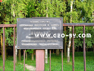 Министерство природных ресурсов и охраны окружающей среды РБ. ''Дубрава'' Памятник природы республиканского значения. Охраняется государством.