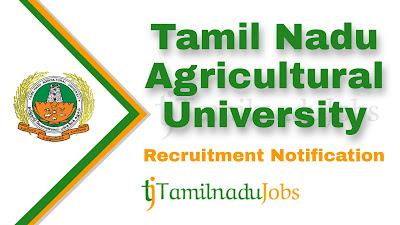 TNAU Recruitment notification 2020, tn govt jobs, TNAU Recruitment 2020, Latest TNAU Recruitment update