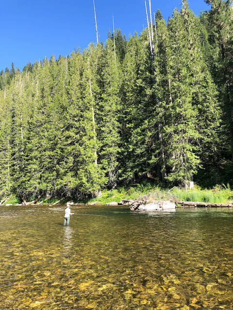 Fly fishing in northern Idaho