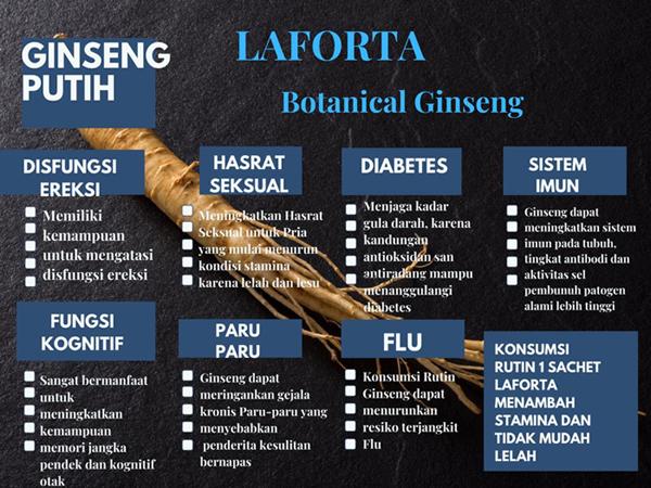 impotensi,impotensi darah tinggi,impotensi diabet,impotensi jantung,Laforta, obat impotensi di jawa tengan,