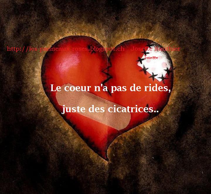 Célèbre LES PANNEAUX ROSES de JOSETTE SAUTHIER: Citation sur la souffrance BI79