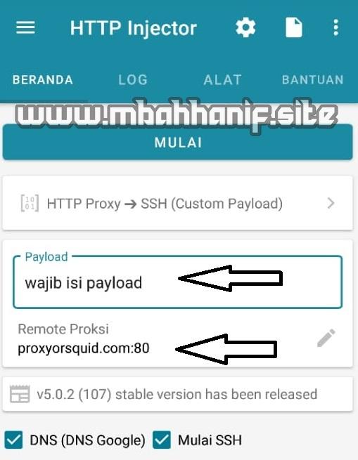 internet gratis http injector