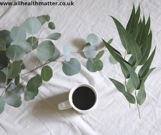 Eucalyptus Types Of Herbs