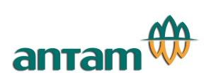 Lowongan Kerja PT. ANTAM (Persero) Tbk Bulan Desember 2017