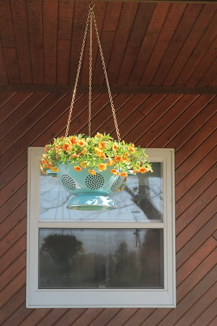 hanging-colander-planter diy