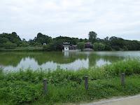 花博記念公園鶴見緑地 大池