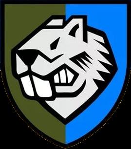 Емблема 808-го окремого понтонно-мостового полку